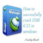 How to crack IDM manually